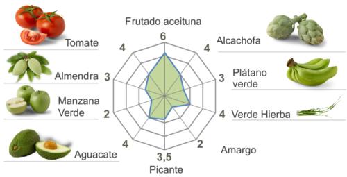 Ficha_cata-arbequina 19-20