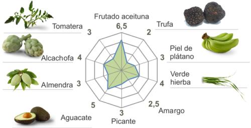 Ficha_cata-casitas 19-20