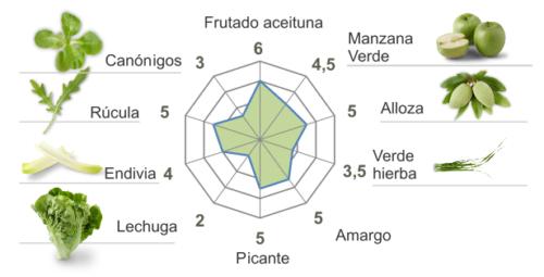 Ficha_cata_cornicabra 19-20